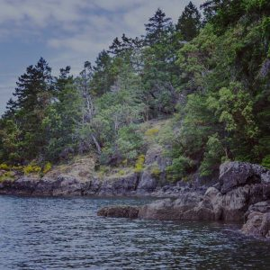 Remote beach on Vancouver Island