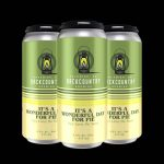 Backcountry - It's A Wonderful Day For Pie | Key Lime Pie Sour - 4 Pack Of Cans