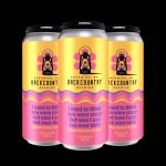 Backcountry Brewing | I Used To Think You Were Crazy But Now I Can See Your Nuts | Coconut Cream Pie Sour - Pack of Cans