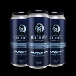 Backcountry Brewing | Punch It! | Galaxy IPA with Pineapple - Pack of Cans