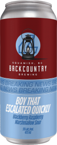Backcountry Brewing | Boy That Escalated Quickly | Blackberry Raspberry Marshmallow Sour - Front of Can