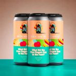 Backcountry Brewing   What Did The Five Fingers Say To The Face?   Tropical Punch Sour - Pack of Cans (2)